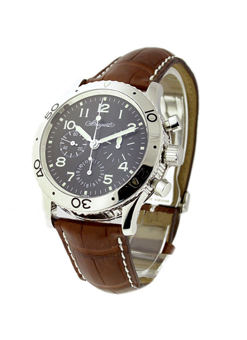 Breguet Type XX Aeronavale in Steel
